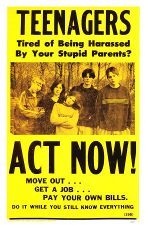 Teenagers--Tired of Being Harassed By Your Stupid Parents?