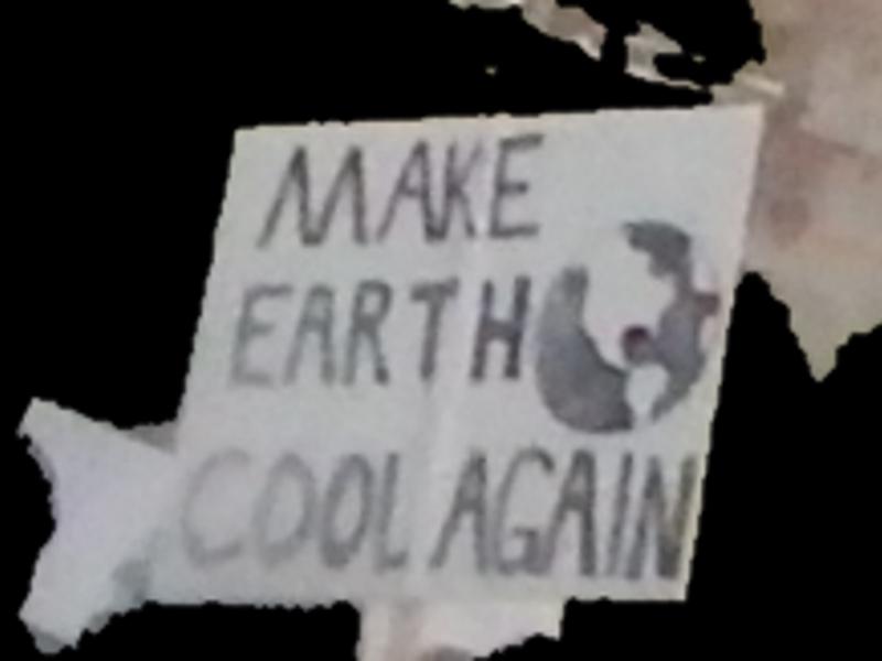 Make Earth Cool Again
