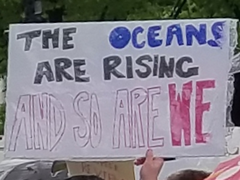 The oceans are rising and so are we.
