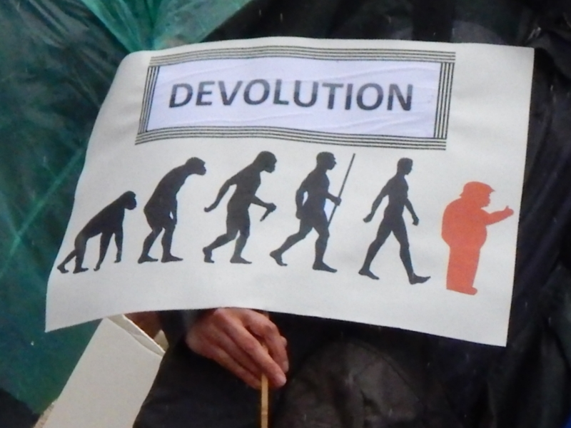 Devolution. One of several along this theme.