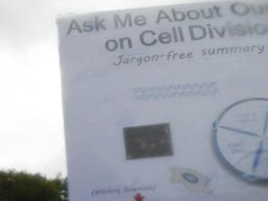 From Dr. Jean Cook, University of North Carolina Medical School: Ask me about our research on Cell Division Control (Jargon-free summary provided.)